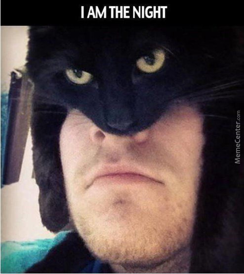 Batman Is Now Part Cat.. What Do You Guys Think About That
