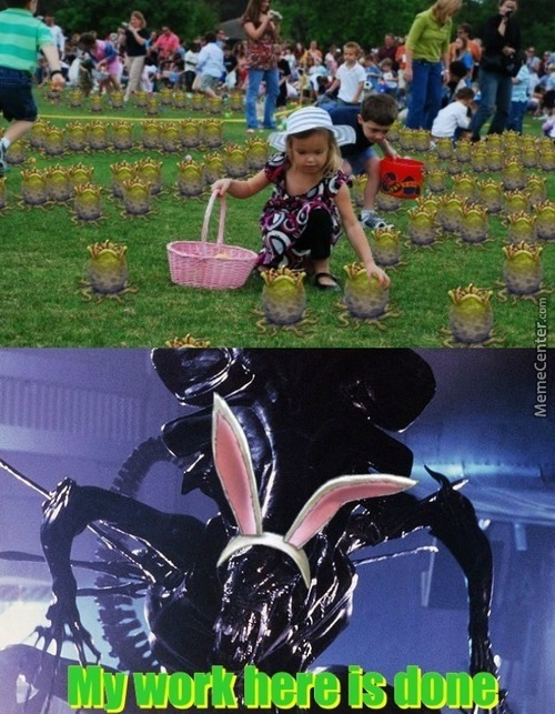 Beacuse Bunnies Are Too Mainstream