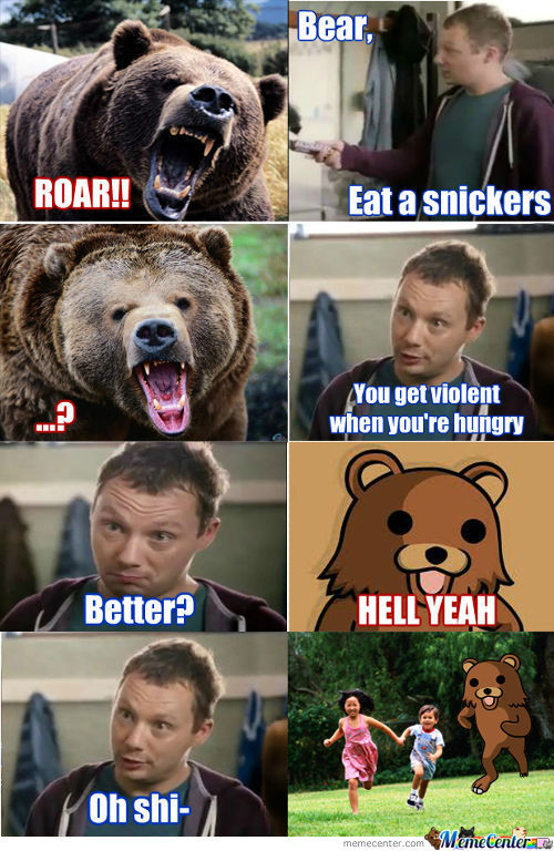 Bear Eat A Snickers