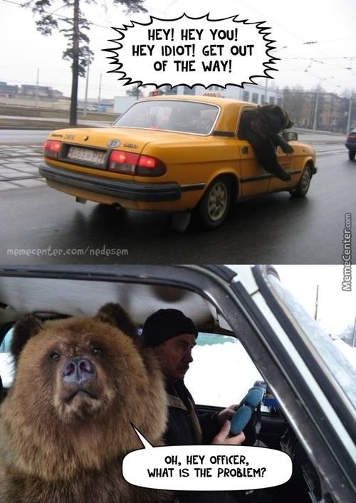 Bear On Traffic