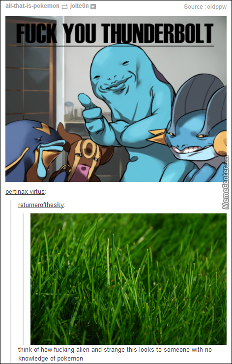 Because A Leaf Is Super Effective Against The Ocean