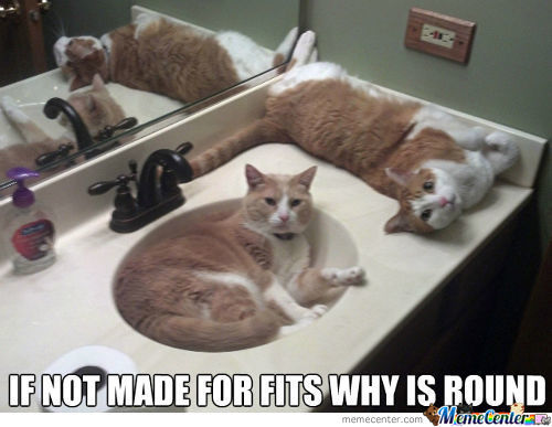 Because Sinks Is Purfect