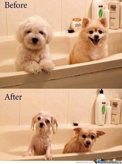 Before Vs. After