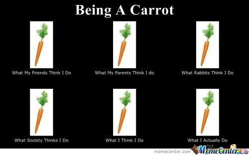 Being A Carrot