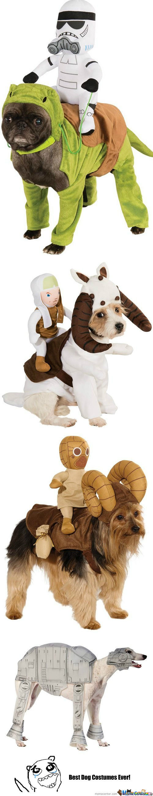 Best Dog Costumes Ever!