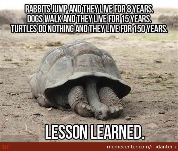 Best Lesson Of My Life