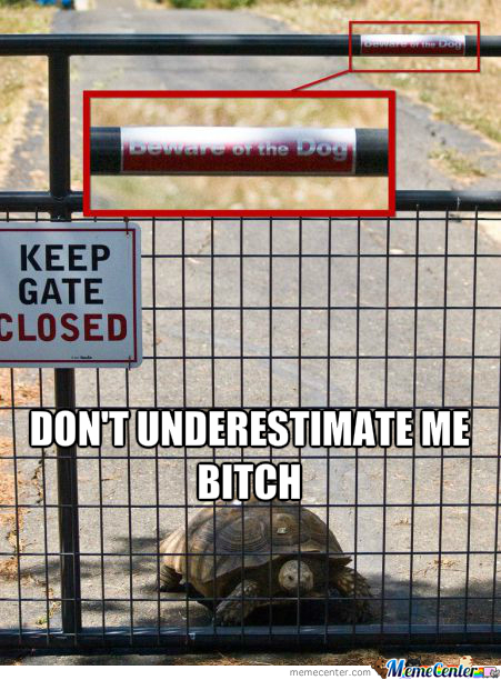 Beware Of The Turtle