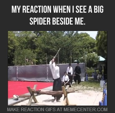 Giant scary spiders memes - photo#14