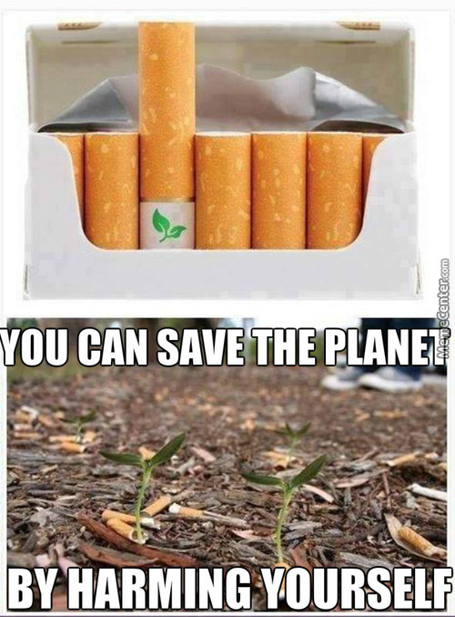 Biodegradable Cigarette Filters With Flower Seeds