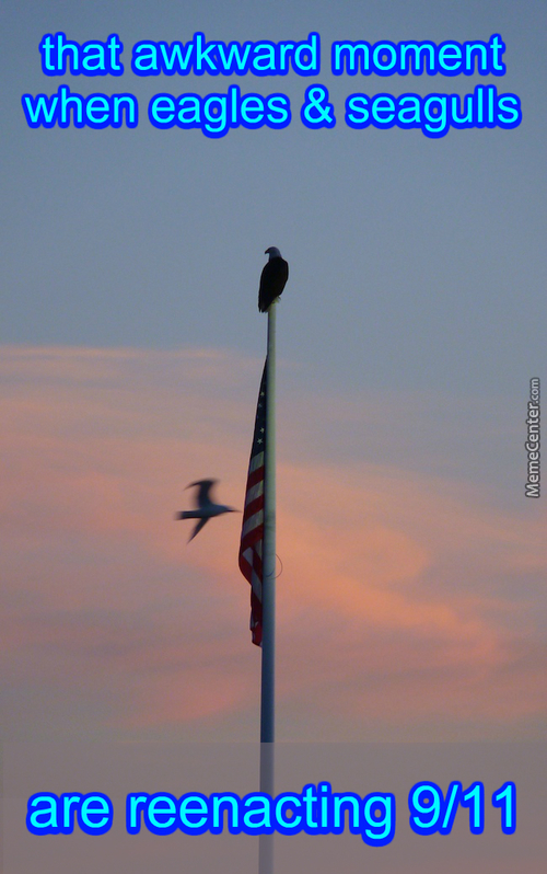 Bird Shit Cant Melt Flag Poles