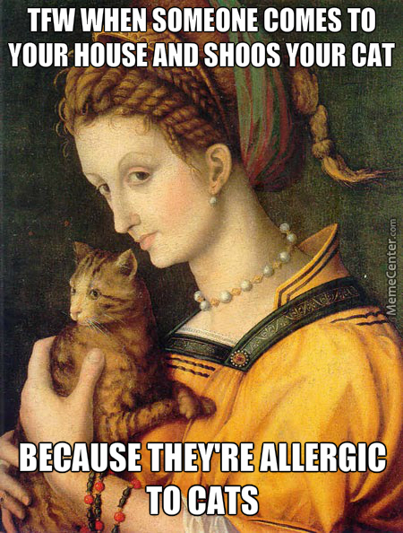 Bit*h Stay Away From My Cat They're Allergic To Your Bullsh*t