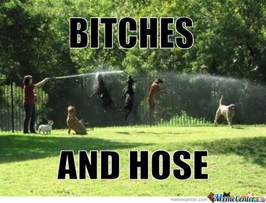 Bitches And Hose.