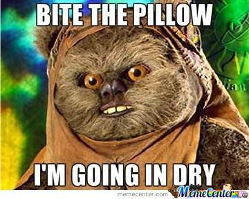Bite The Pillow - Ewok