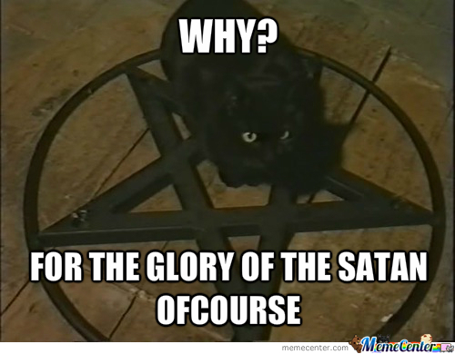 Black Cats Bring You Bad Luck As They Worship Satan By