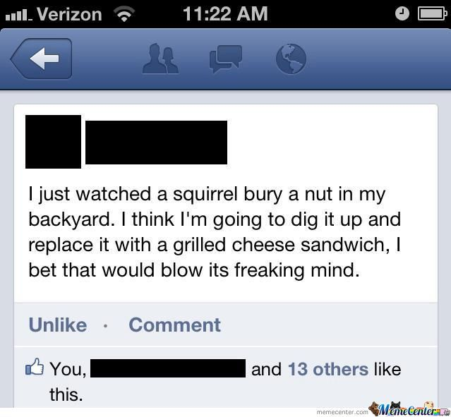 Blowing A Squirrels Mind