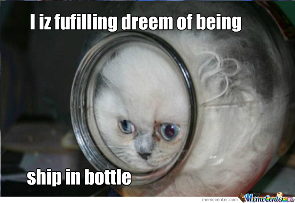 Bottle Kitty!