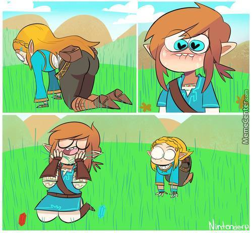 how to get rupees in botw