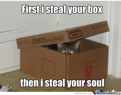 Box Cat Wants Your Soul For Eternity