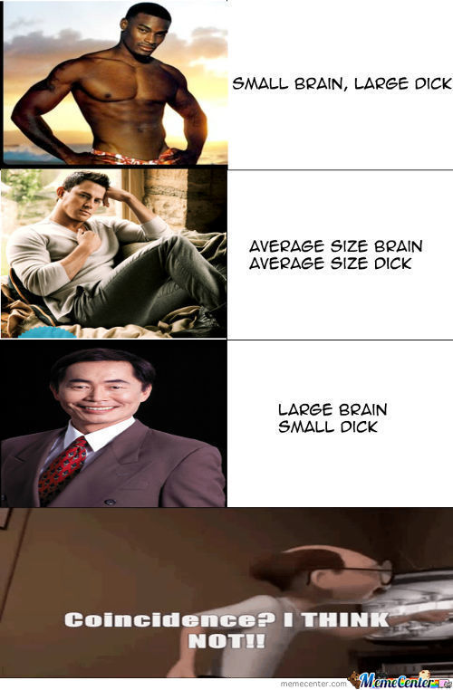 Brain Size And Dick Size Are Connected