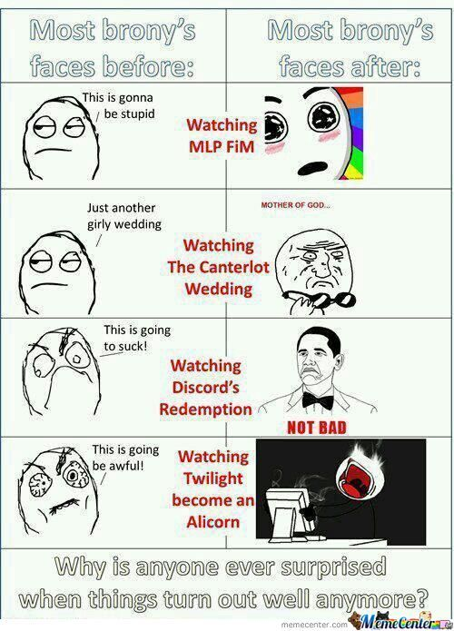 Brony Reactions