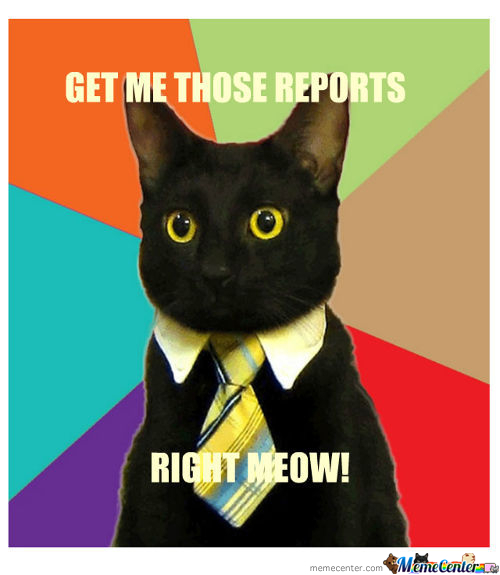 Business Cat Talks Business