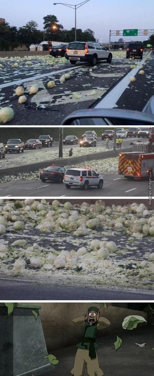 Cabbages, Cabbages Everywhere...