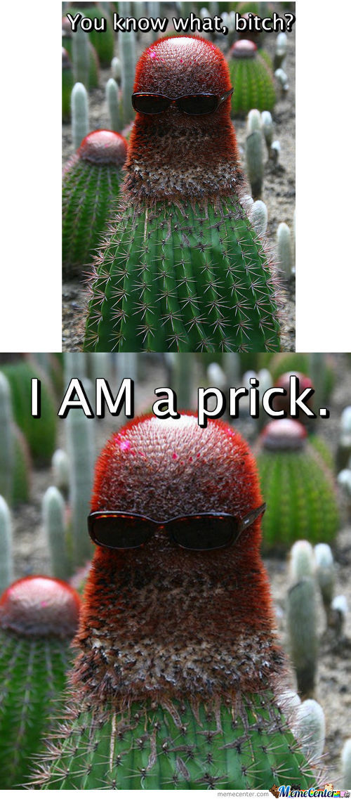 Cactus Is A Prick