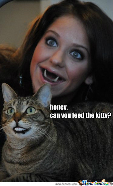 Can You Feed The Kitty Honey?