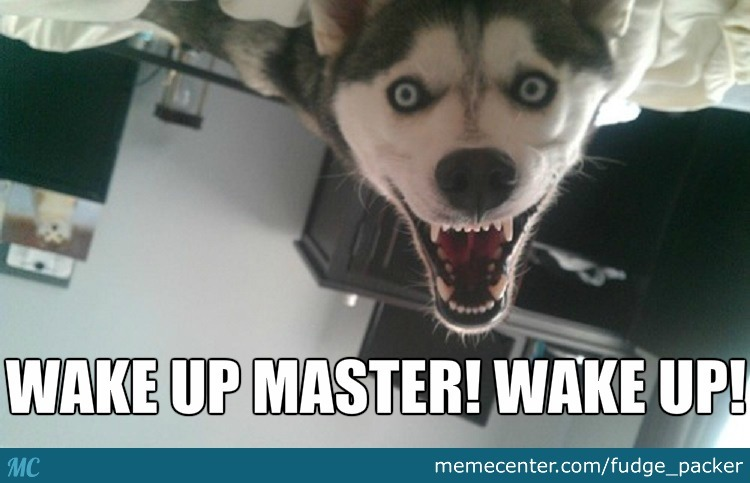 Funny Meme For Waking Up : Can you wake up dead by fudge packer meme center