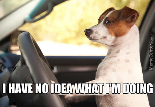 Canine Driver
