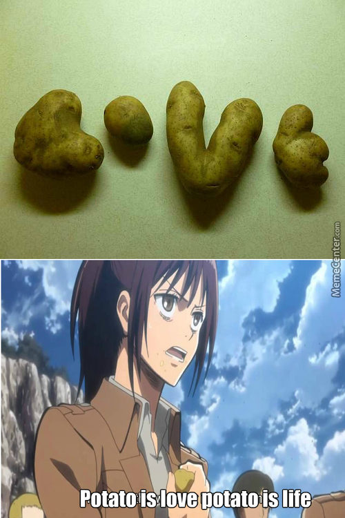 Cant Stop Potatoing