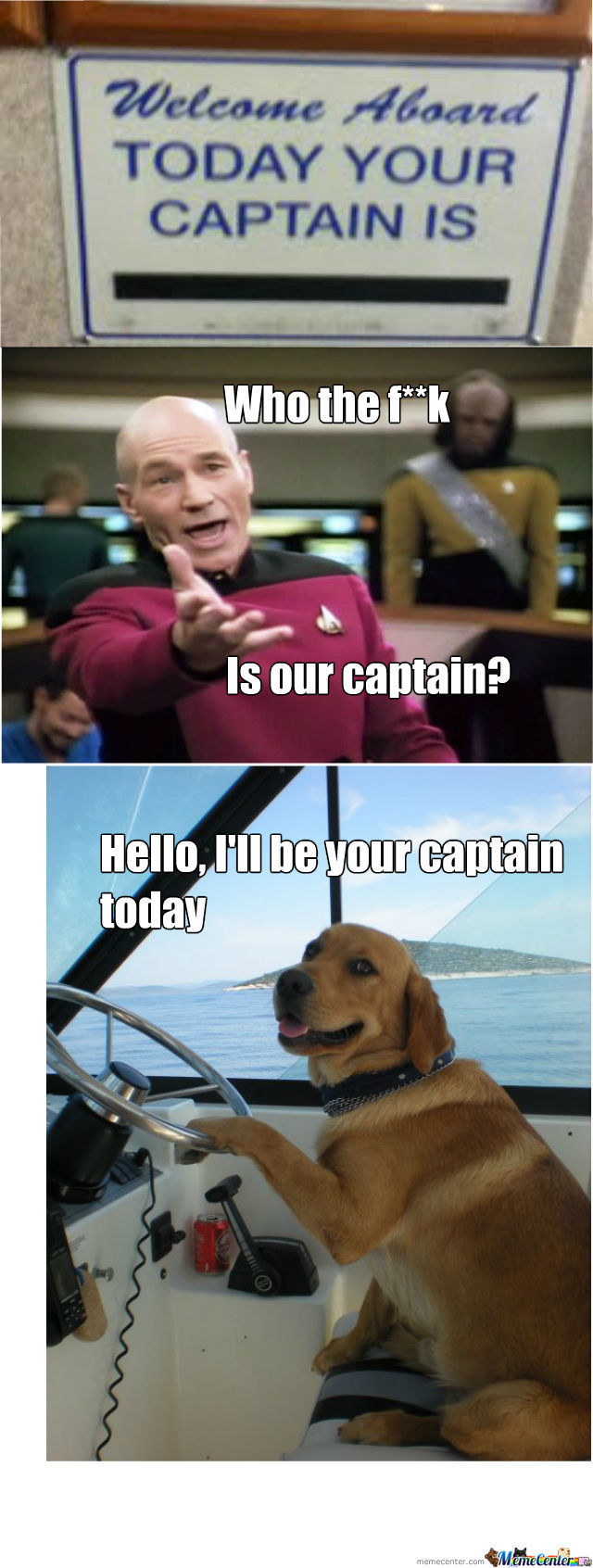 Captain Dog