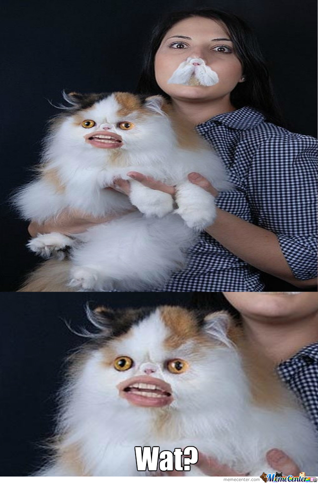 Cat Mouth Swap..