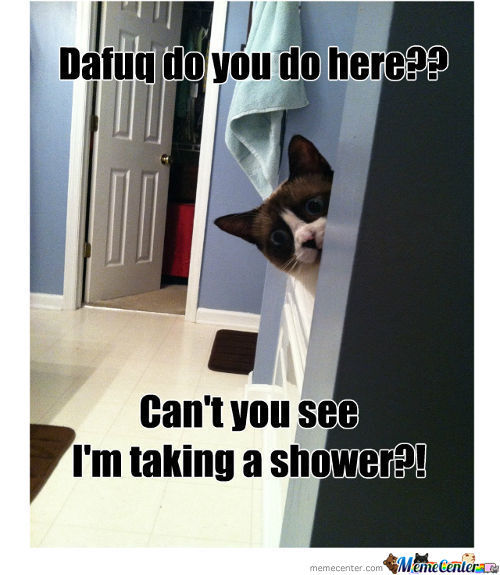Cat Taking A Shower