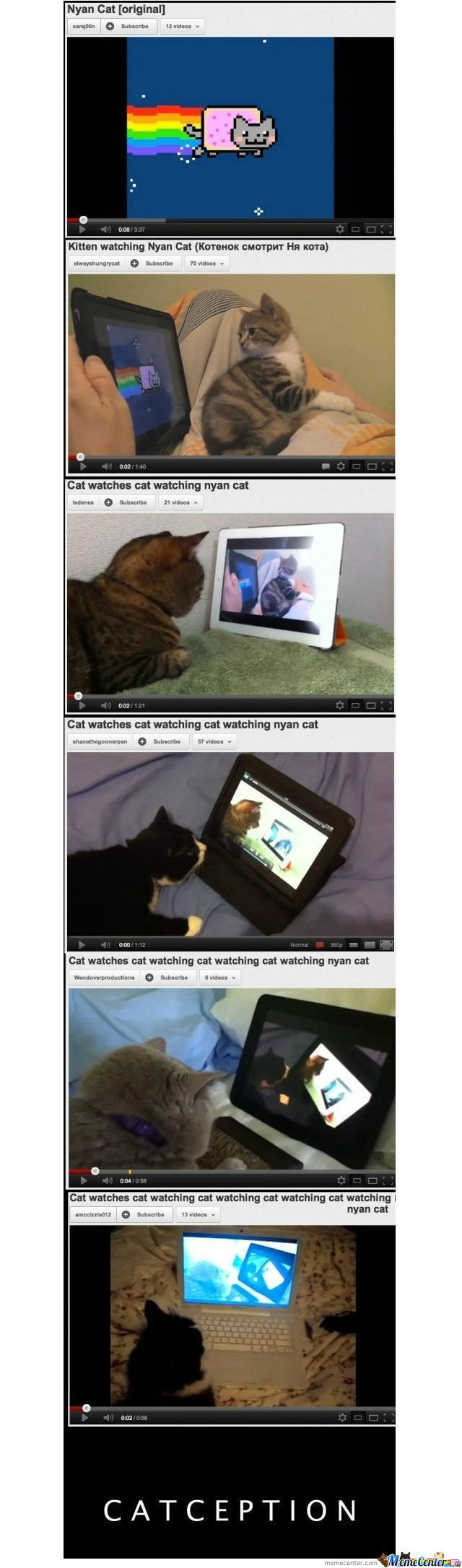 Catception