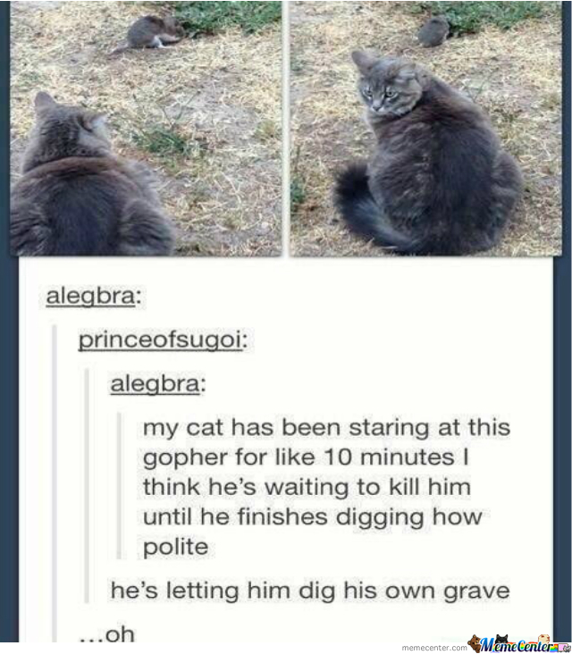 Cats Are Just Plain Evil.