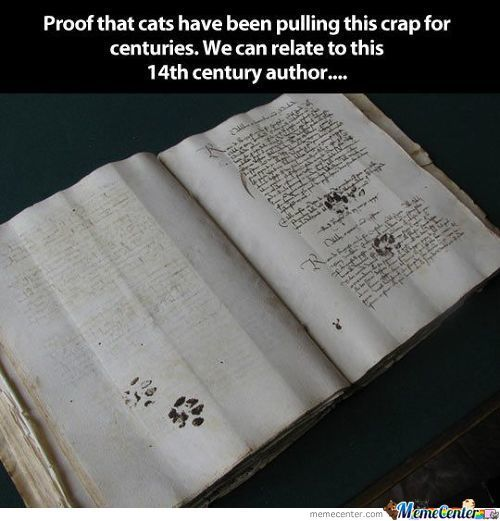 Cats Have Always Been Jerks...
