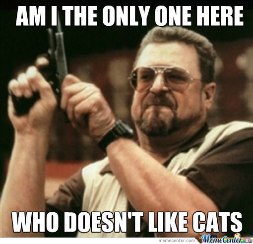 Cats...i Hate Cats!