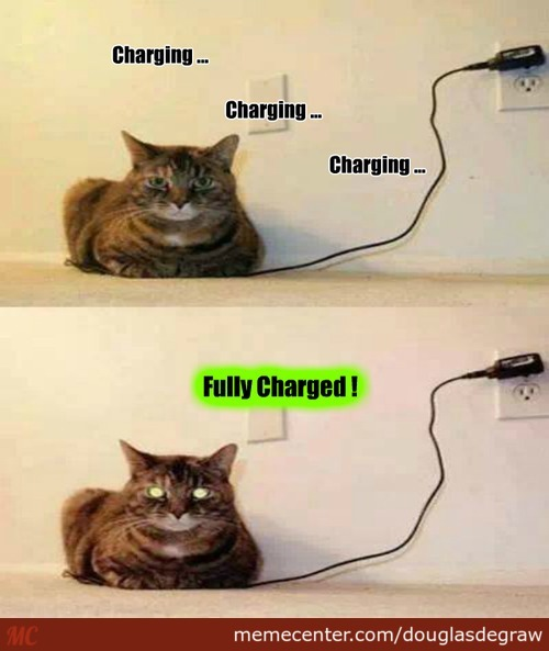 Charging Your Cat