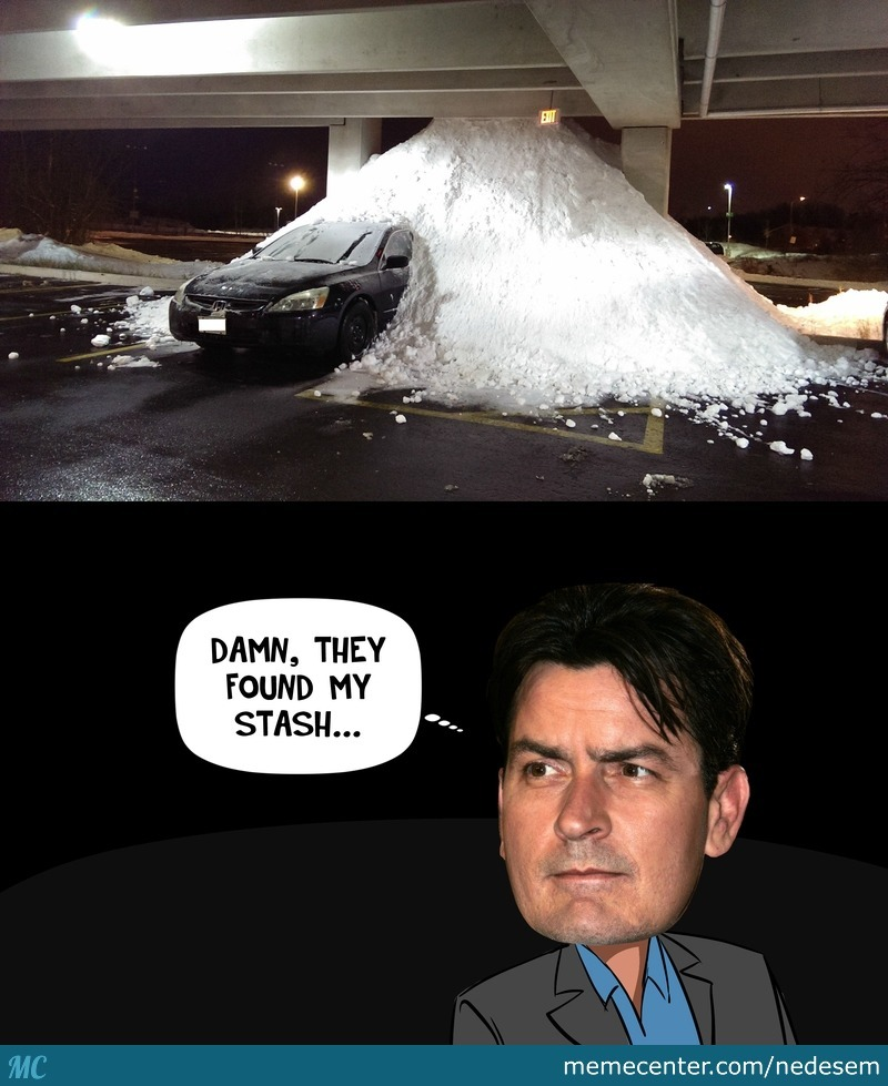 Charlie Sheen Busted