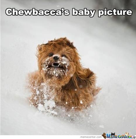 Chewbacca's So Cute!