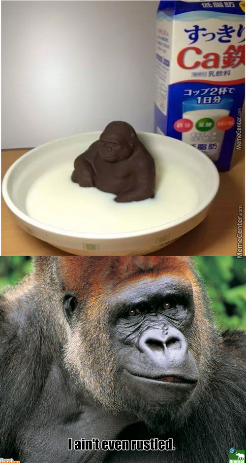 Chocolate Jimmies