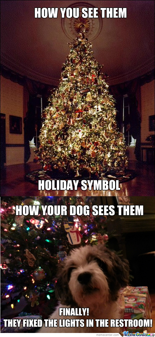 Christmas Trees by recyclebin - Meme Center