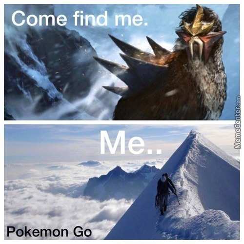 Climb Mount Everest To Catch Entei?, Worth It