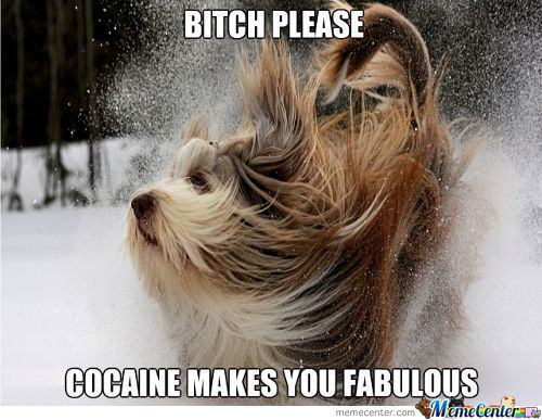 Cocaine Makes You Fabulous