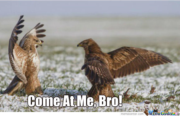 Come At Me, Bro!