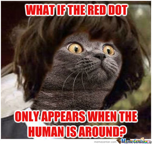 Conspiracy Cat Catches On Quickly