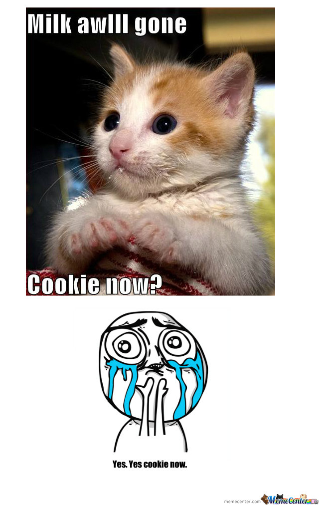 Cookie Now?
