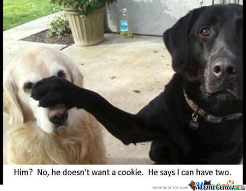 Cookie??