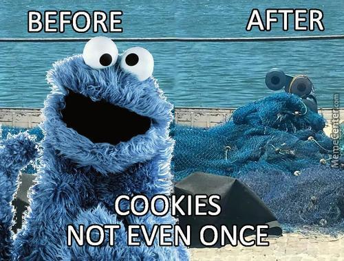 Cookies Not Even Once